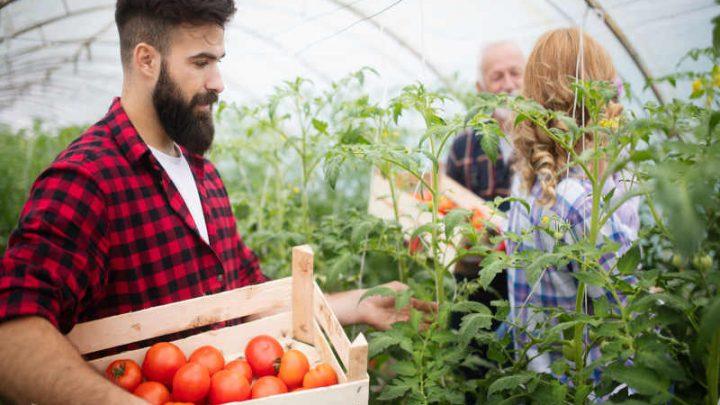 Biznes na wsi – 12 pomysłów na firmę, którą możesz otworzyć.
