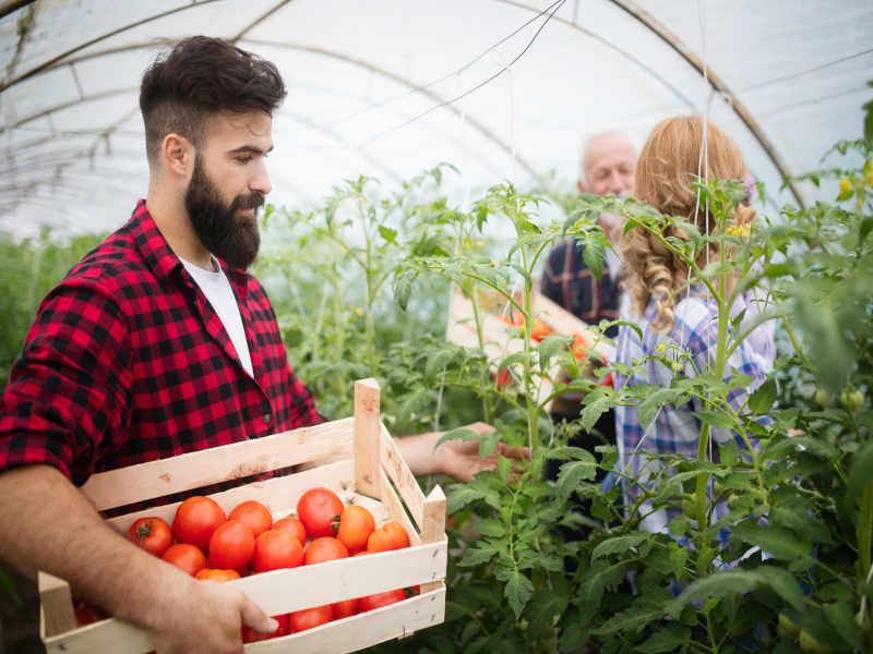 Pomysł na biznes na wsi – 12 sposobów